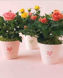 Small Flower Pot by Floral And Plant Favors To Diy For Your Big Day Martha Stewart