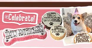 dog birthday cakes cookies u0026 treats fresh baked dog food dog bakery