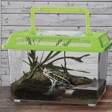 amazon com toysmith water hut 5 5x6x8 inch toys u0026 games