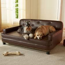 best sofa fabric for dogs enchanting best sofa for dogs top 5 leather dog beds reviews care
