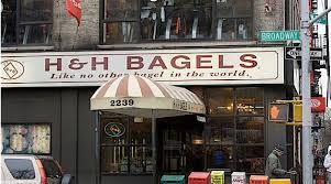 Seeking Bagel Desperately Seeking A New York Bagel In The Forward