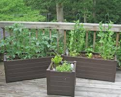 may 2009 garden rant