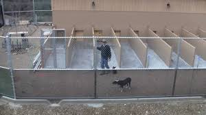 Commercial Building Plans Building A Commercial Dog Boarding Kennel Part Two Youtube