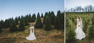 bridal sesssion christmas tree farm boyd mountain waynesville nc
