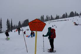 sledding at paradise on mount rainier lewistalkwa