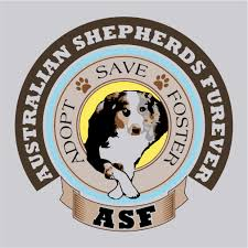 buy a australian shepherd asf u0027s 3rd anniversary color logo t shirt buy a shirt save an