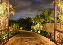 Moonlight Landscape Lighting Transform Your Tree Lined Drive Into A Moonlight Drive With
