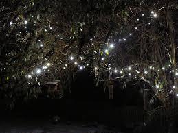 lights writing the