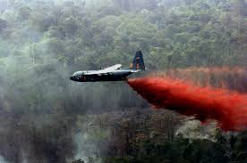 Canadian Wildland Fire Training by Aerial Wildfire Fighting Dangerous But Is It Effective
