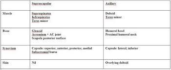 Innervation Of Supraspinatus Combined Suprascapular And Axillary Circumflex Nerve Block The