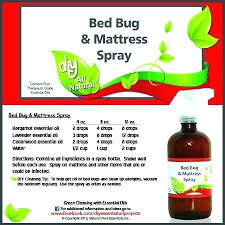 remedies for bed bug bites remedy for bed bugs bed bug spray with essential oils oils bed bug