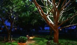 landscape lighting styles trees gardens u0026 planters sa landscaping