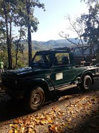 gypsy jeep a trip to dhikala in corbett national park soul safar