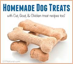 recipe for dog treats dog treats cat treats and more