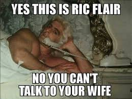Ric Flair Memes - who made this ric flair the nature boy facebook