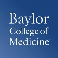 Houston City Flag Baylor College Of Medicine Wikipedia