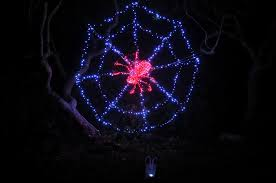 botanical gardens fort bragg ca festival of lights things to do in mendocino county nov 30 dec 9 2012 mendocino