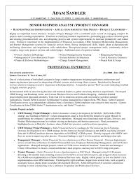 Career Change Resume Objective Examples Business Intelligence Resume Objective Samples Sample Resume