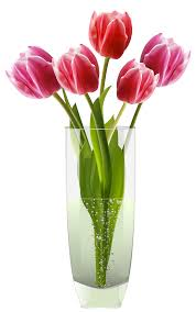 Clipart Vase Of Flowers Lily Flower Vase Clipart Icon Opacity Collection