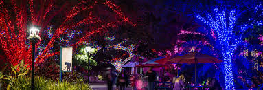 Zoo Lights Schedule by Holiday Lights In Houston Best Christmas Display Spots