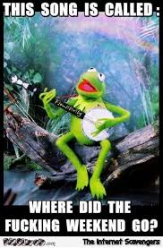 Funny Fucking Memes - where the fuck did the weekend go funny kermit meme pmslweb