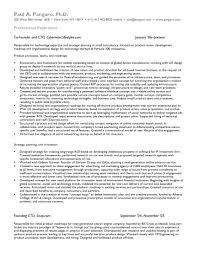 Cto Sample Resume by Download Market Research Resume Sample Haadyaooverbayresort Com