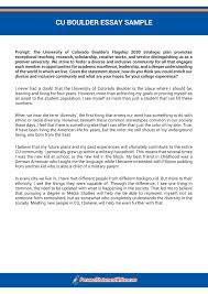 college diversity essay sample application essay writing service harry bauld college application essay writing service harry bauld