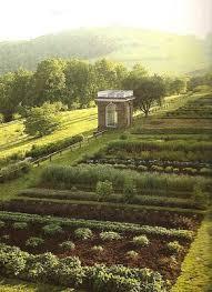 the vegetable garden