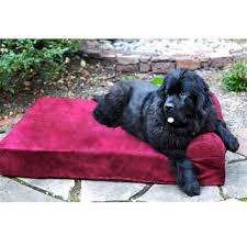 Barker Dog Bed Big Barker 7 Inch Pillowtop Orthopedic Dog Bed Sleek Edition