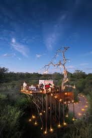 Amazing Tree Houses by 1306 Best Tree Houses Images On Pinterest Treehouses Trees And