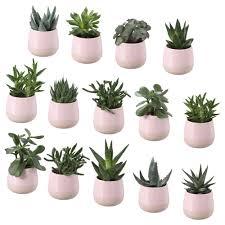 plants pots u0026 gardening tools ikea