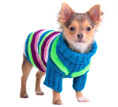 free crochet sweater pattern how to crochet a puppy sweater