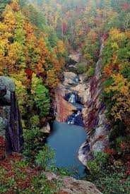 Place To Visit In Usa Best 25 Georgia Usa Ideas On Pinterest Georgia Georgia Usa