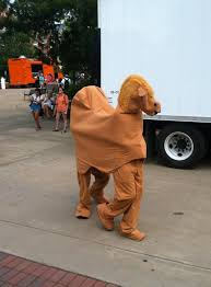 Camel Halloween Costume Dudes Celebrate Hump Walking Auburn U0027s Campus