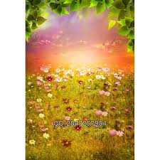 Wedding Backdrop Outlet Only 30 00 Sunset Leaves Flowers Grass Cheap Photography