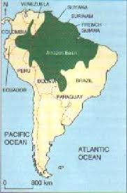 south america map rainforest causes and consequences of deforestation of the rainforest