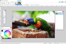 the free photo editing software the best 7 software packages