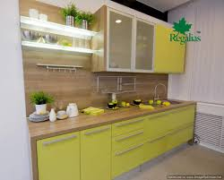 Modern Green Kitchen Cabinets Modern Green Kitchen Cabinets 03 Kitchen Design Ideas Org