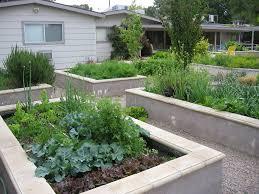 las vegas raised flower beds landscape modern with concrete