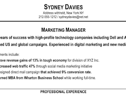 Sample Profile Resume by Download Sample Profile Summary For Resume Haadyaooverbayresort Com