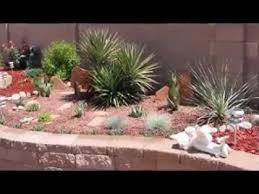 Cactus Garden Ideas Easy Cactus Garden Ideas