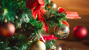 real or artificial fascinating facts about christmas trees inforum