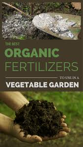 the best organic fertilizers to use in a vegetable garden