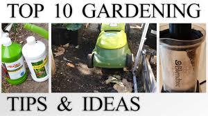 10 gardening tips u0026 ideas every gardener should know in 4k youtube