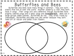 collection of solutions comparing and contrasting worksheets 3rd