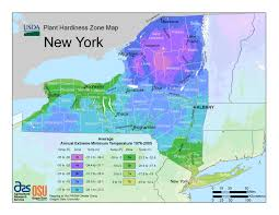 Google Map Of New York by New Hardiness Zone Map For New York