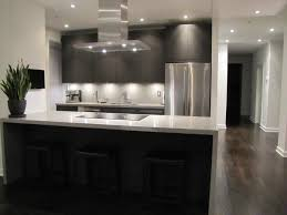 tag for contemporary galley kitchen design ideas contemporary