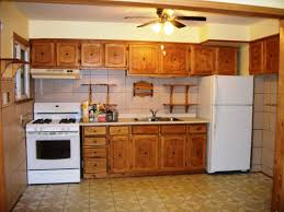 remodeling kitchens ideas kitchen cool kitchen ceiling ideas l shaped kitchen design