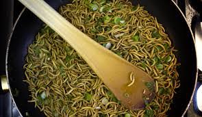 insectes dans la cuisine manger des insectes source de protéines l express styles