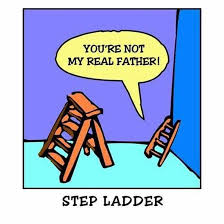 Ladder Meme - step ladder meme guy